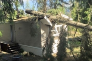 Rich Nelson escaped serious injury when a tree crashed through the family trailer during Monday's thunderstorm. — Submitted photo