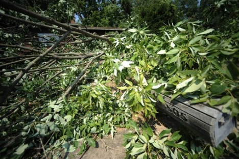 U.S. residents in east struggle without power after storms
