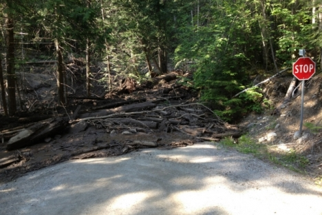 The mudslide covered the road leading into Johnson Landing. — photos courtesy of Dean