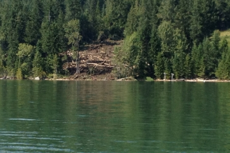 Thursday's mudslide at Johnson Landing flowed down to Kootenay Lake.